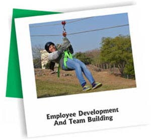 Employee Development And Team Building